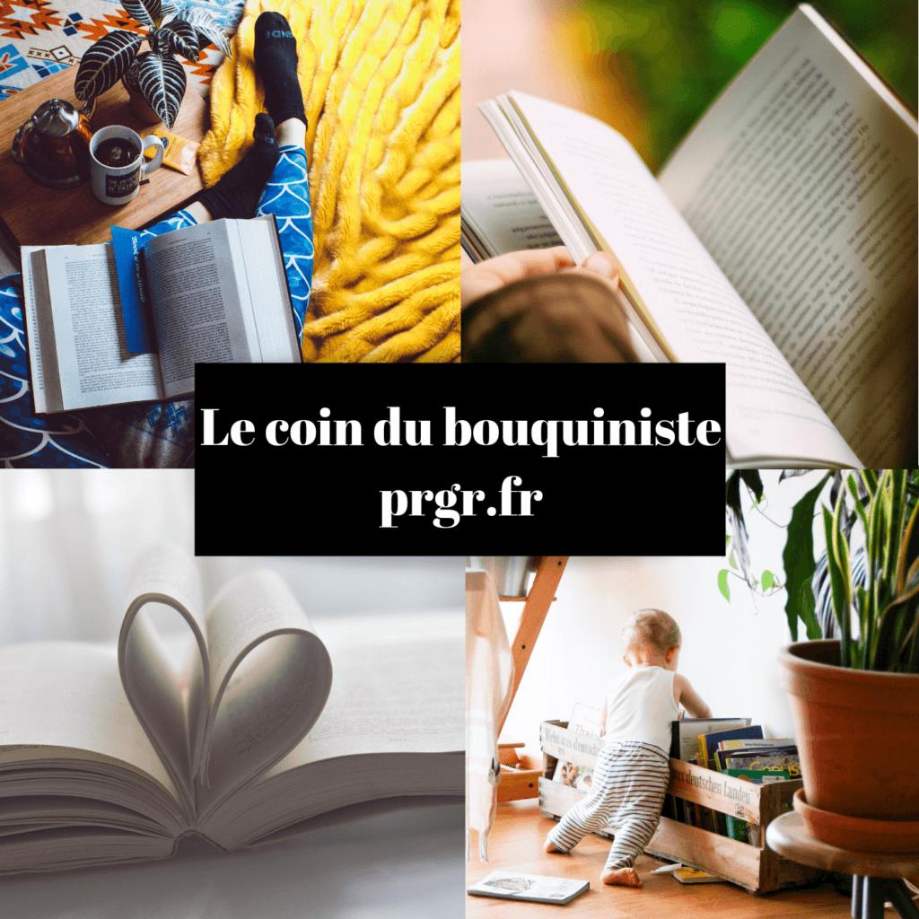 conseils lecture livres adulte enfant littérature blog maman blog famille recomposée blog les petits ruisseaux font les grandes rivieres blog PRGR https://prgr.fr