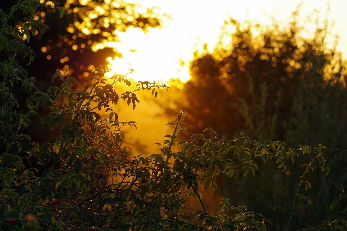 été-coucher-de-soleil