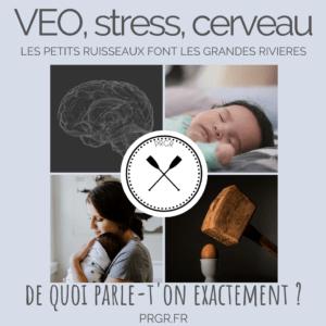 VEO STRESS CERVEAU ENFANT MALTRAITANCE