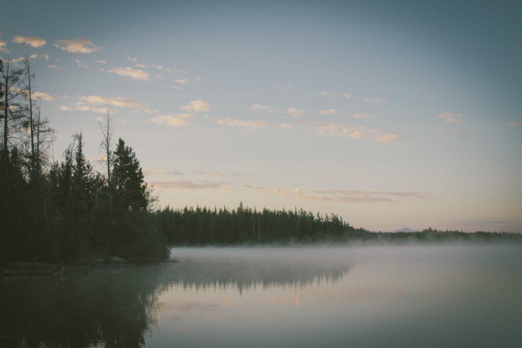 lac arbres forêt brume lever de soleil